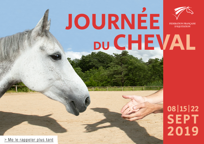 photo journée du cheval 2019